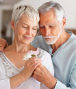Loving husband presenting flower to wife Royalty Free Stock Photography