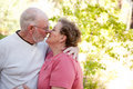 Loving Senior Couple Outdoors Royalty Free Stock Photo