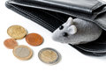 Low budget concept image of poor living or financial difficulties empty wallet with a toy mouse looking from it Stock Image