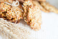 Low-fat pastry cereal with unrefined sugar Royalty Free Stock Image
