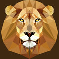 Low Poly Animal Face Lion