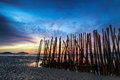 Low tide and bamboo sticks sunrise abstract art photography Royalty Free Stock Photo