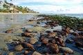 Low tide at Cleo Street and Thalia Street, Laguna Beach, California. Royalty Free Stock Photo