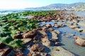 Low Tide at Laguna Beach at Cleo Street, Laguna Beach, California Royalty Free Stock Photo
