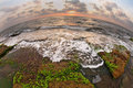 The low tide, photographed lens Fisheye Royalty Free Stock Images