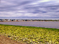 Low Tide at Silver Sands State Park in Milford Royalty Free Stock Photo