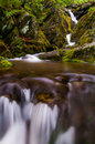 Lower Dark Hollow Falls, in it's lush, rocky enviroment in Shena Royalty Free Stock Photo