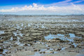 Lowtide seascape and blue sky Stock Photography
