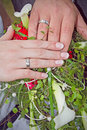 Loyalty oath wedding symbol hands bride and grom Royalty Free Stock Photo