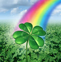 Luck concept with a four leaf clover over a field of green clovers with a rainbow from the sky shinning down as a symbol of good Stock Photos