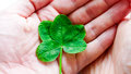 Luck is in your hands - luck concept Royalty Free Stock Photo