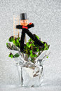 Lucky charm chimney sweep with shamrock. New Year