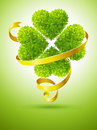 Lucky clover and ribbon for saint Patrick's day Royalty Free Stock Photos