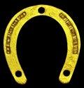 Lucky golden horseshoe. Royalty Free Stock Photo