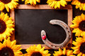 Lucky horseshoe in a frame of yellow sunflowers Royalty Free Stock Photo