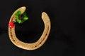 Lucky horseshoe with shamrock and ladybug