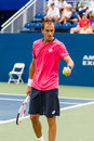 Lukas rosol plays center court at the winston salem open during semi finals Royalty Free Stock Photography