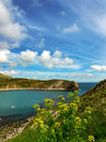 Lulworth Cove Stock Images