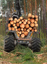 Lumber industry the harvester working in a forest Stock Photos
