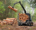Lumber industry the harvester working in a forest Royalty Free Stock Photo
