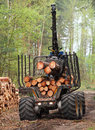 Lumber industry the harvester working in a forest Stock Image