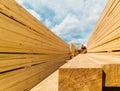 Lumber market Royalty Free Stock Photo