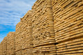 Lumber stacked at a sawmill Royalty Free Stock Image