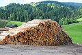 Lumber wood pile of cut in front of the mountains in austria Stock Images