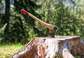 Lumberjack axe Royalty Free Stock Photo