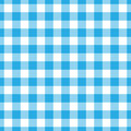 Lumberjack plaid pattern in blue and black. Seamless vector pattern. Simple vintage textile design