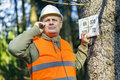 Lumberjack talking on cell phone near marked tree in forest Royalty Free Stock Photo