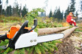 Lumberjack Worker With Chainsaw In The Forest Royalty Free Stock Photo