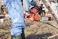 Lumberjack working with chainsaw, cutting wood Royalty Free Stock Photo