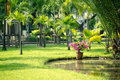 Lumphini park Royalty Free Stock Photography
