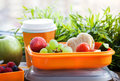 Lunch box with sandwich and fruits Royalty Free Stock Photo