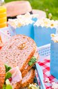 Lunch in the park on the green grass. Summer sunny day and picnic basket Royalty Free Stock Photo