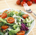 Lunch with salad tomato and cheese Royalty Free Stock Photos