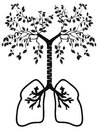 The lung tree