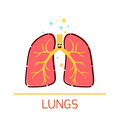 Lungs cartoon icon
