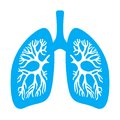 Lungs diaphragm vector icon Royalty Free Stock Photo