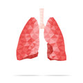 Lungs faceted Royalty Free Stock Photo