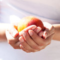 Luscious velvety peach in the gentle hands delicate female Stock Photos