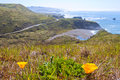 Lush California Pacific Coast Highway 1 in Spring Royalty Free Stock Photo