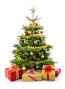 Lush christmas tree with gift boxes bright studio shot of in front of a gorgeous decorated in red and gold isolated on white Royalty Free Stock Photography