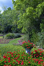 Lush garden Royalty Free Stock Photo
