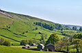 Lush green countryside of the Yorkshire Dales Royalty Free Stock Photo