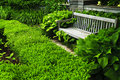 Lush green garden Stock Photo