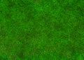 Lush green grass blur texture. wallpapers pattern. Top view Royalty Free Stock Photo