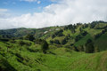 Lush green landscape in inland costa rica Stock Photo