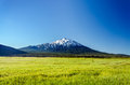 Lush green meadow and mount bachelor snowy rising above a near bend oregon Royalty Free Stock Photos